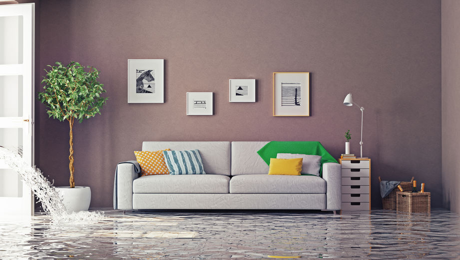 flood damage restoration Denver CO
